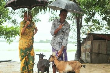 IDLC Casper donates goats to Flood victims
